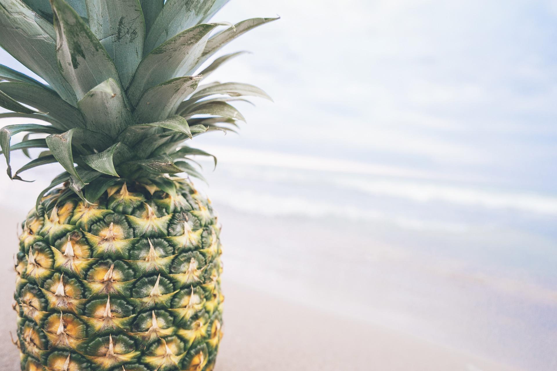 Diferença entre ananas e abacaxi